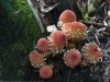 2012-11-04-1dmk3-3821.cr2